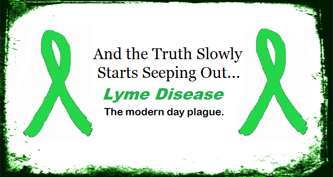 How Is Lyme Disease Diagnosed