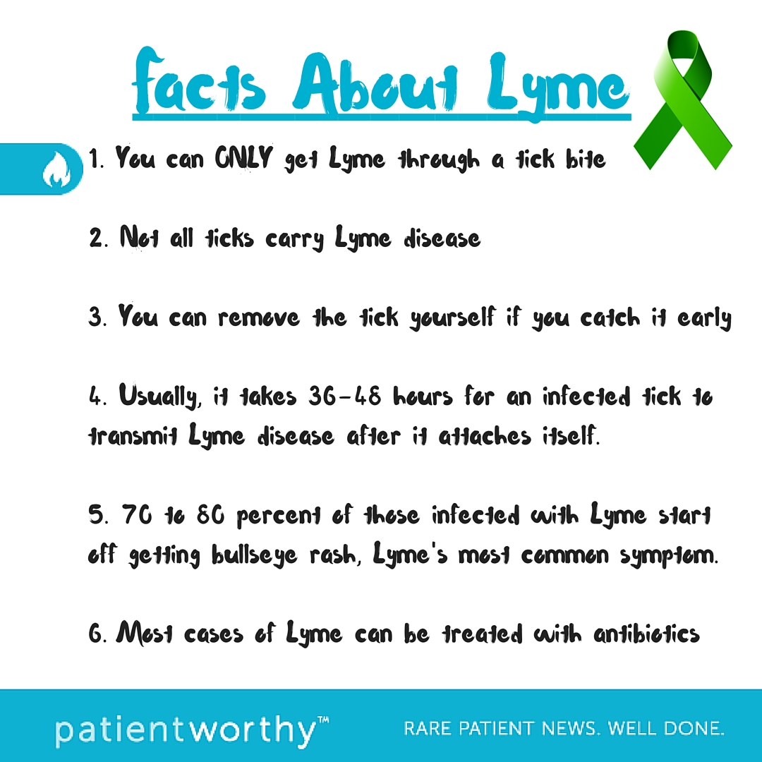 Is Lyme Disease Treatable