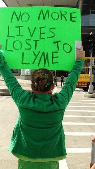 Lyme Doctor