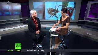 Test For Lyme Disease Springfield Missouri