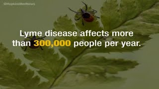 Lyme Disease Clinic Harrisburg Pennsylvania