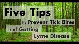 Lyme Disease Symptoms Ann Arbor Michigan