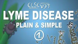 Test For Lyme Disease Lansing Michigan