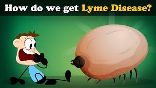 Lyme Diseases Osage Beach Missouri